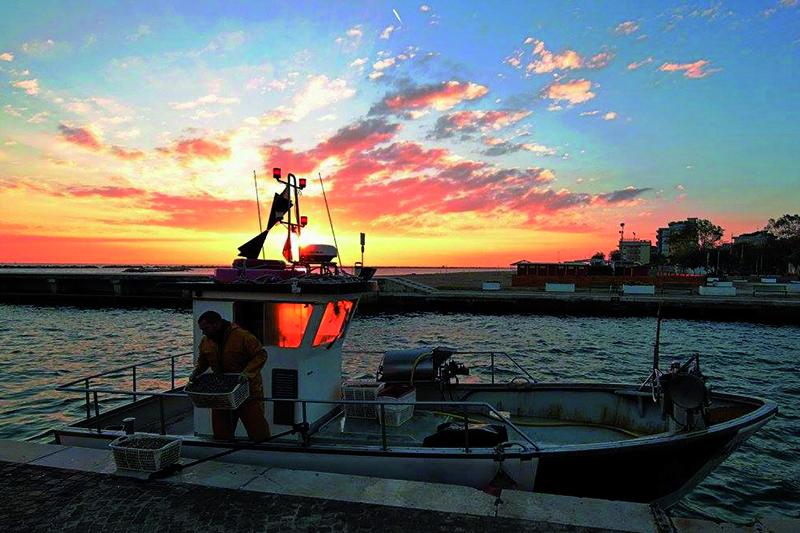 P-Assaggi di Mare: Impariamo con i pescatori della Marineria di Bellaria-Igea Marina
