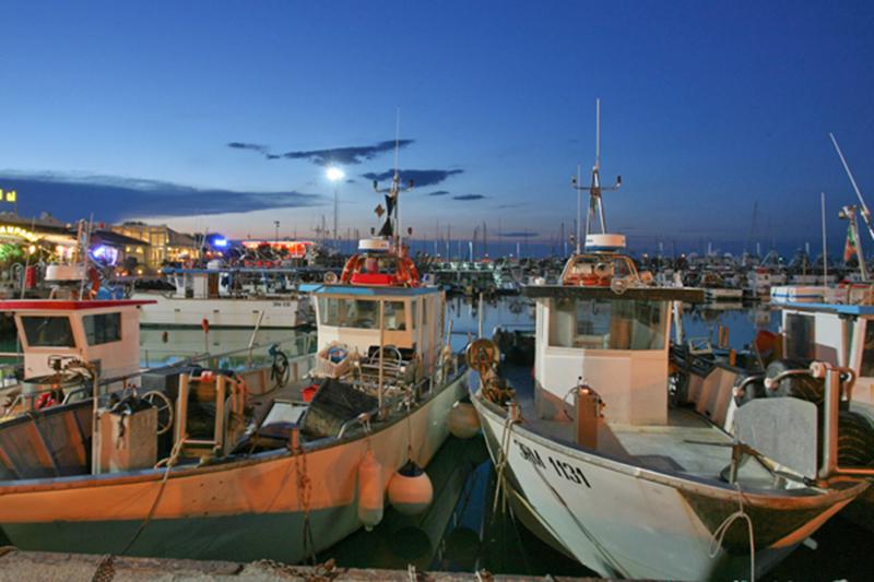 P-Assaggi di Mare: Impariamo con i pescatori della Marineria di Cattolica