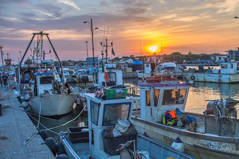 P-Assaggi di Mare: Impariamo con i pescatori della Marineria di Ravenna