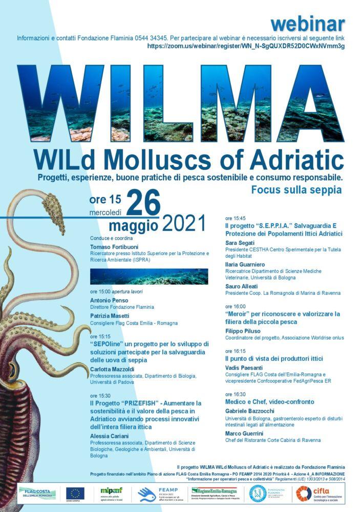 Webinar WILMA - Progetti, esperienze, buone pratiche di pesca sostenibile e consumo responsabile. Focus sulla seppia. 26.05 ore 16.00