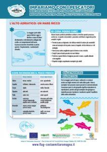 L'oro azzurro dell'Adriatico - Materiali